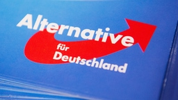 AfD Logo | Bildquelle: picture alliance/dpa