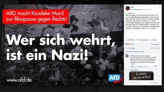 Screenshot alternativefuerde-Facebook-Auftritts | Bildquelle: Screenshot Facebook AfD