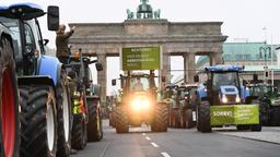 Bauern-Demo am Brandenburger Tor | Bildquelle: REUTERS