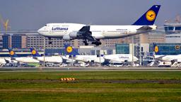 Lufthansa-Maschine landet in Frankfurt am Main