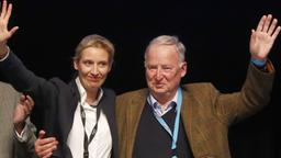 Alice Weidel and Alexander Gauland