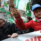 Demonstration gegen Montis Sparkurs in Genua | null
