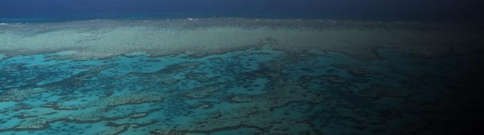 Das Great Barriere Reef in Australien | Bildquelle: dpa