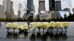 Rosen an der 9/11-Gedenkstätte in New York | Bildquelle: picture alliance / dpa