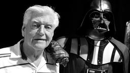 Darth Vader Darsteller David Prowse