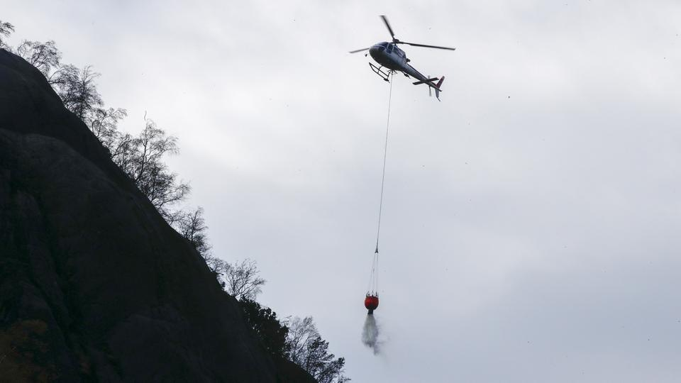 Waldbrände in Norwegen | Bildquelle: AFP