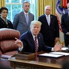 Präsident Trump im Oval Office | REUTERS
